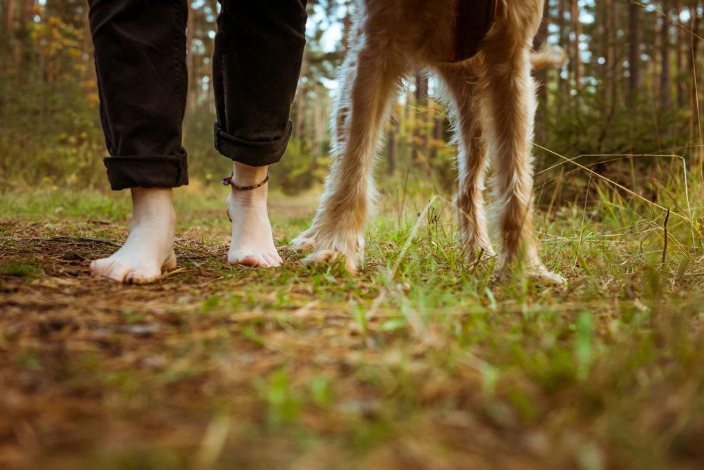 Waldbaden-mit-Hund-Inhalt