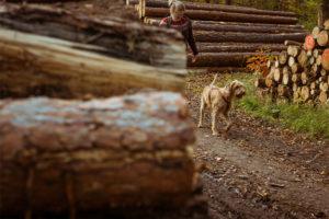 Waldbaden-mit-Hund-4
