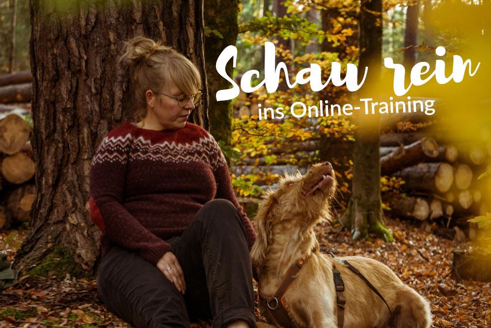 Waldbaden-mit-Hund-Vorschau-Onlinetraining